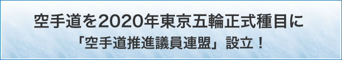 空手道を2020年東京五輪正式種目に「空手道推進議員連盟」設立