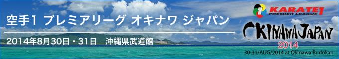 空手1プレミアリーグ オキナワ ジャパン 2014年8月30日・31日 沖縄県武道館