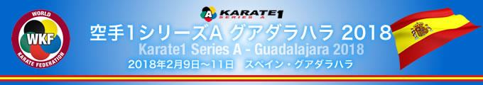 KARATE 1シリーズA グアダラハラ2018 2018年2月9日〜11日 スペイン・グアダラハラ