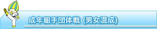 組手団体戦(男女混成)